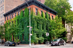 famed-photographer-annie-leibovitz-lists-her-home-in-the-west-village-1